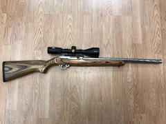 Ruger 10/22 Target Stainless